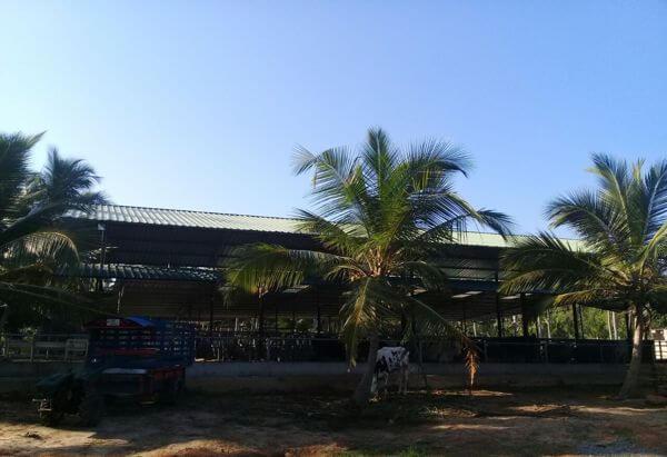 BFL - Farm Fresh Agro, Halawatha