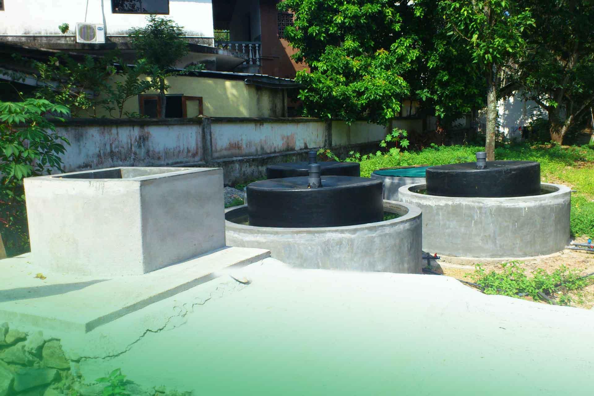 Biogas Energy